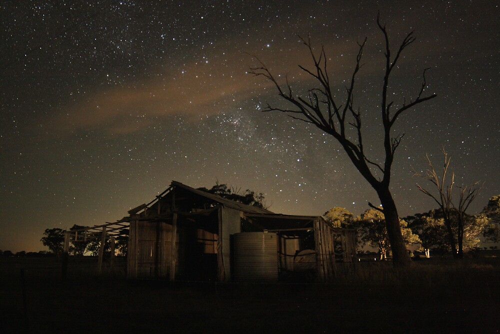 The Shearing Shed by Kylie Epskamp