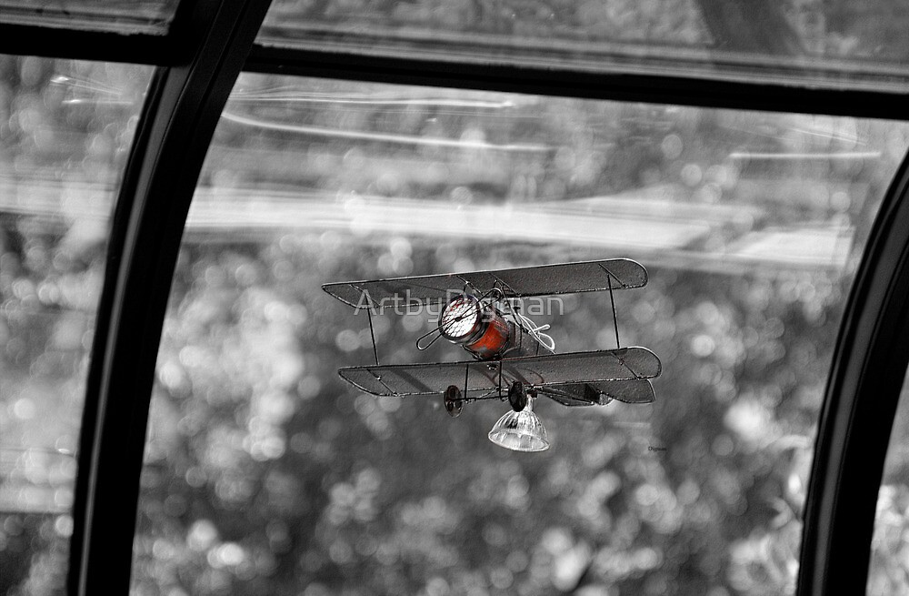 Fly at the Window  by ArtbyDigman