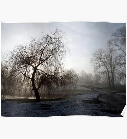 Willow in the Mist Poster