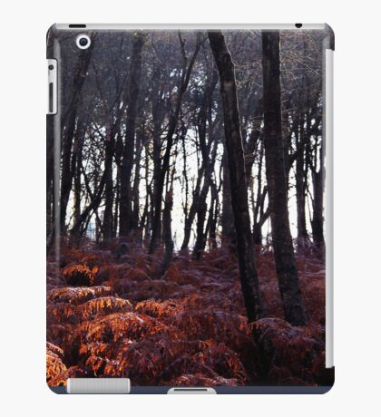 Autumn Morning - Bucklebury iPad Case/Skin