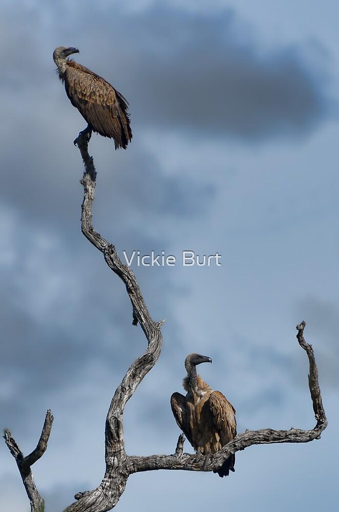 Hanging around by Vickie Burt