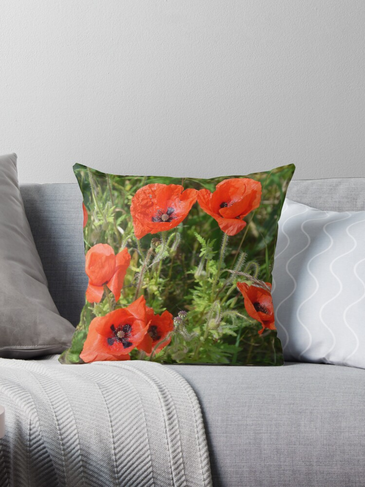 Poppies are Red by walstraasart