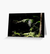 Forest Shade Greeting Card