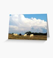 On A Summer Afternoon In The Country Greeting Card