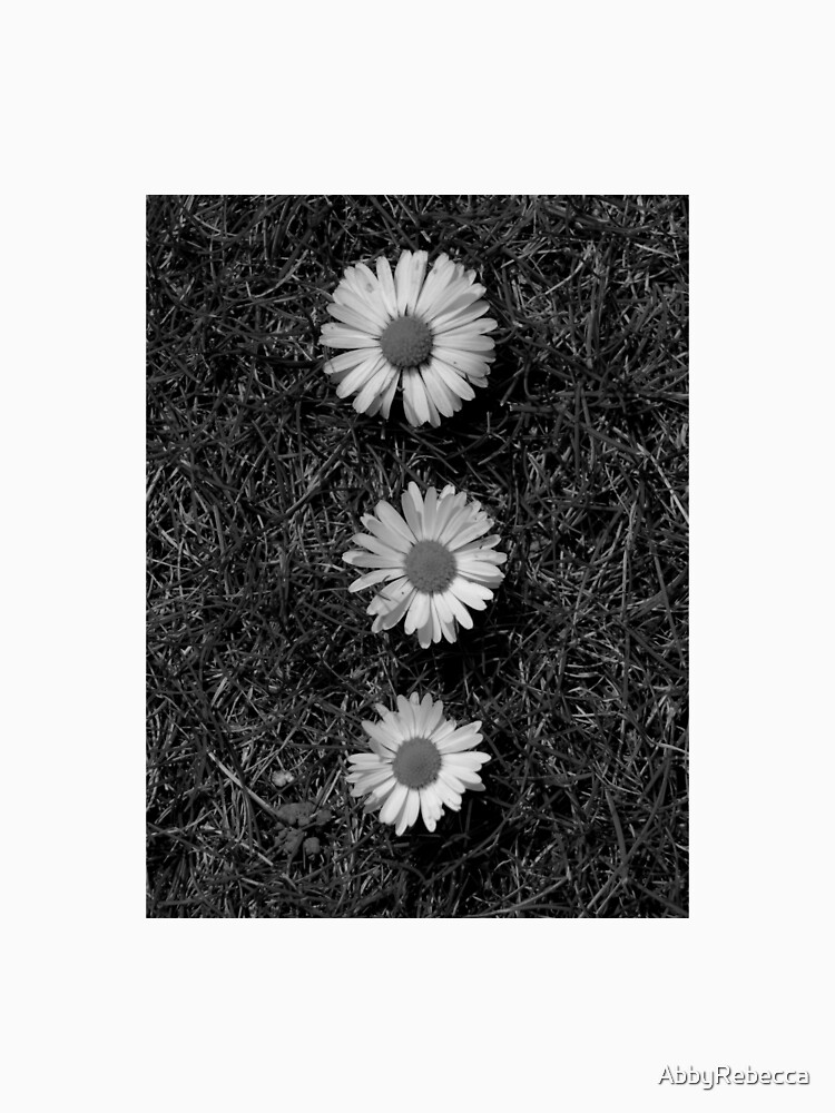 Black and white Dasies  by AbbyRebecca