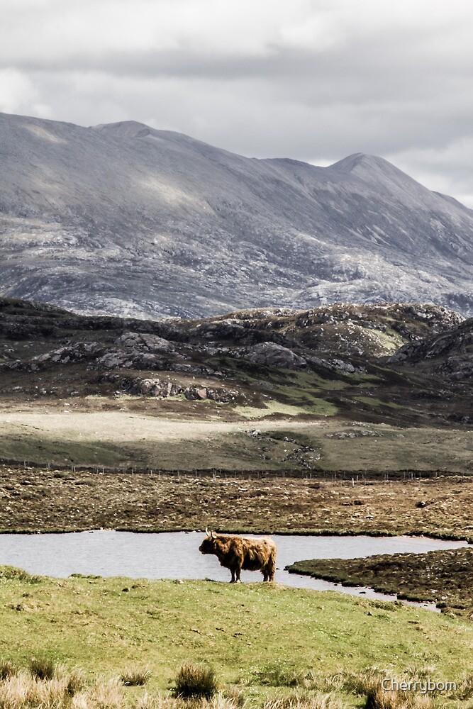 Highland Hues, Scotland by Cherrybom