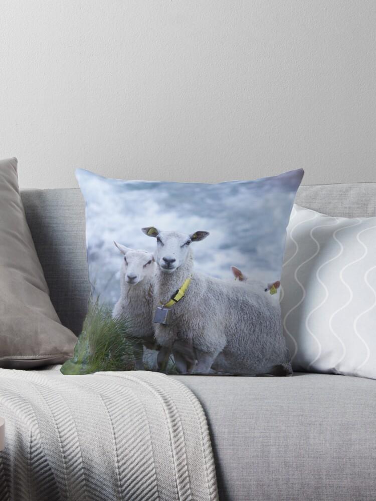 Sheep by Joar Buvarp