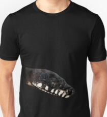 Boelen's Python T-Shirt