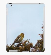 Competiton in song iPad Case/Skin