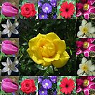 Golden Jewel Rose Collage von BlueMoonRose