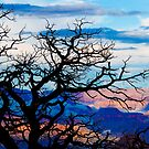 The Grand Canyon by KerryPurnell