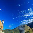 Llamas  by KerryPurnell
