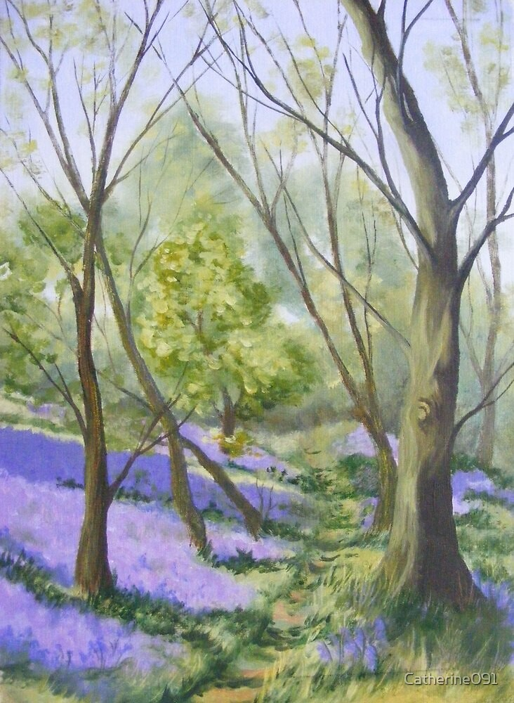 Bluebell Wood by Catherine091