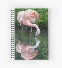 Zaphod Flamingbrox Spiral Notebook