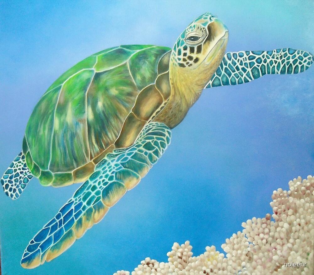 """""""Turtle"""" by noleenr"""