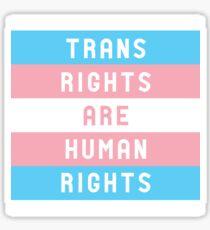 Pegatina Los derechos trans son derechos humanos
