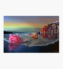 Tidal Flowers Photographic Print