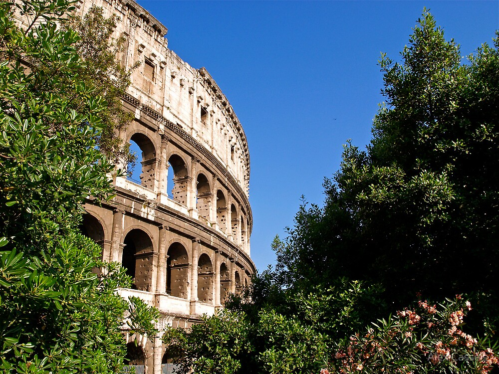 Summer morning view of the Colosseum by Alex Cassels