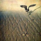 Against the Tide by Ellen Cotton