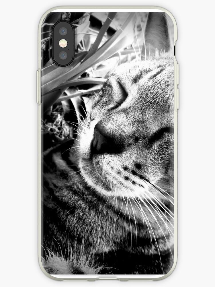 lemo wild cat by dgthisara