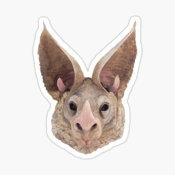 California Leaf nosed bat Sticker