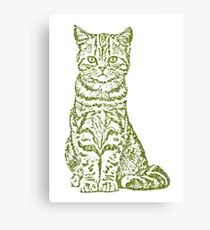 Tabby Cat in Jungle Color Canvas Print