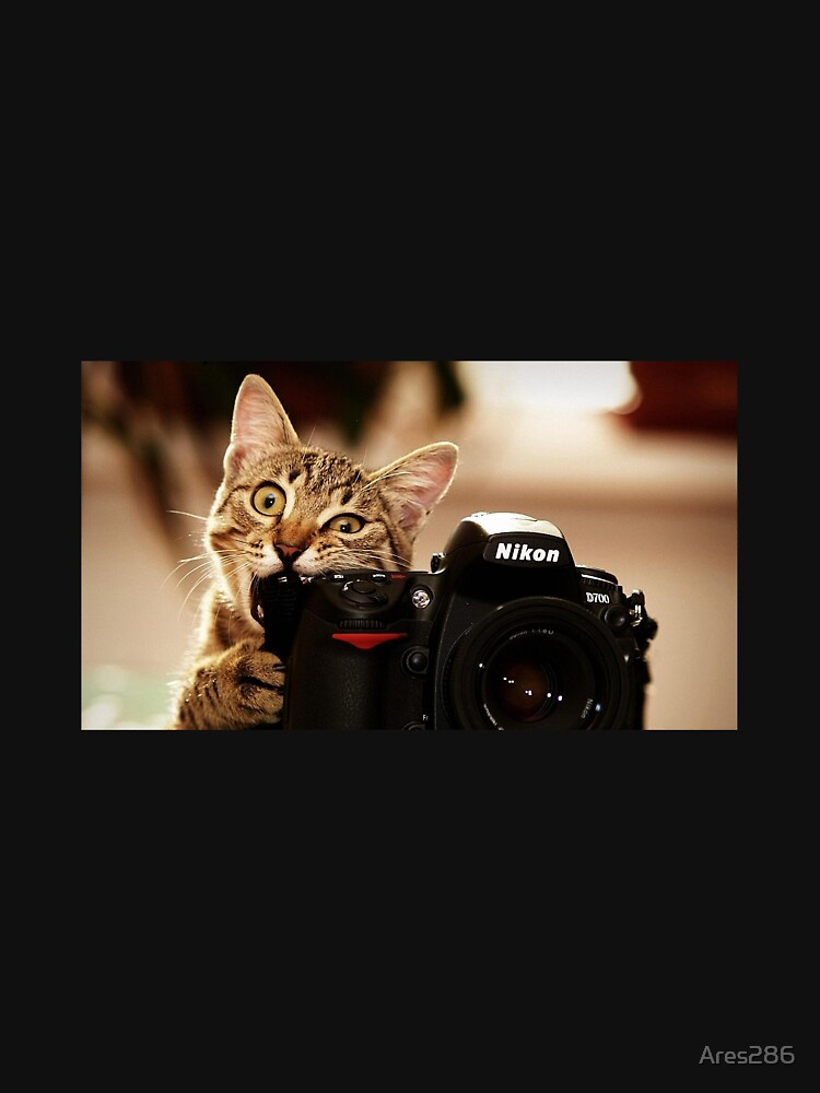 Cat Photographer by Ares286