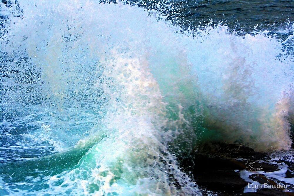 """""""Splish Splash"""" by Lynn Bawden"""