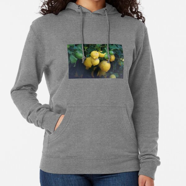 What a lovely bunch of lemons Lightweight Hoodie