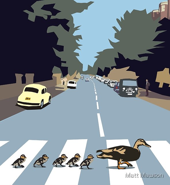 ducks by Matt Mawson