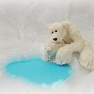 Handmade bears from Teddy Bear Orphans - Peppy Polar Bear by Penny Bonser