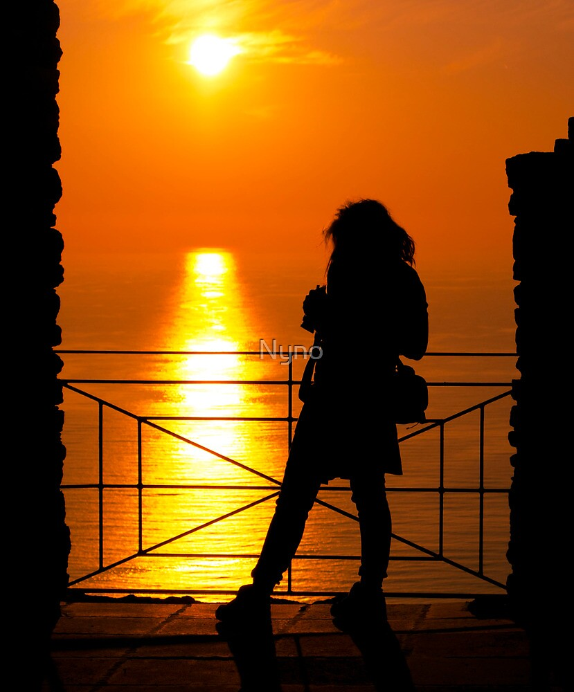 sunset silhouette by Nyno
