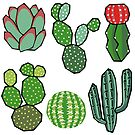 Cacti by Kelly King