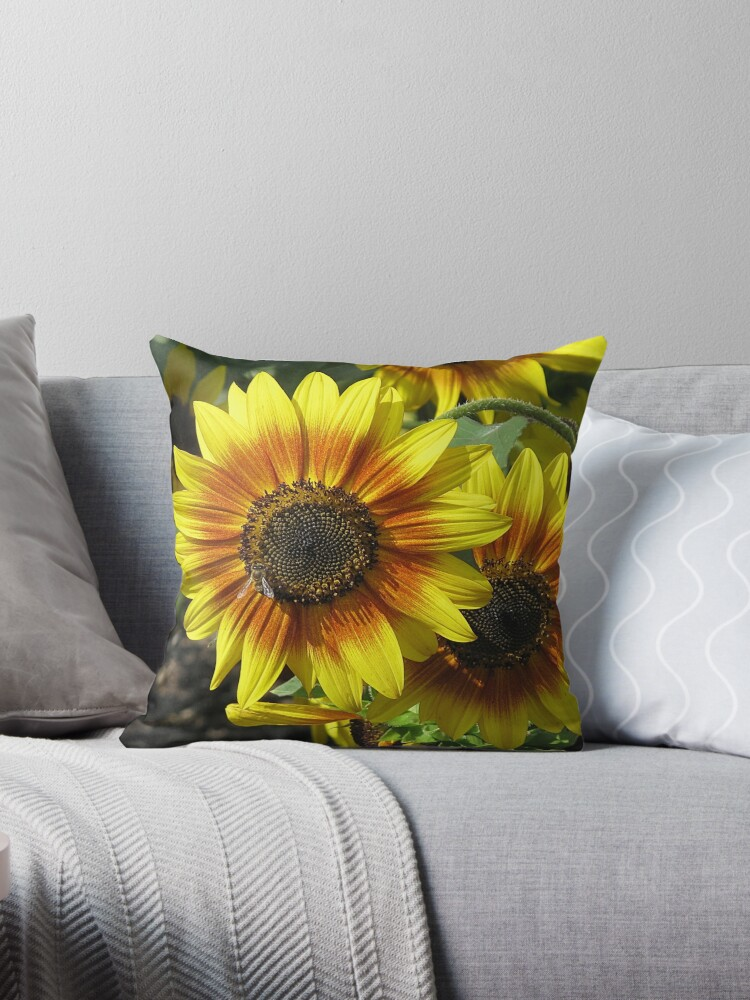 Sunny Delight Pillow by Monnie Ryan
