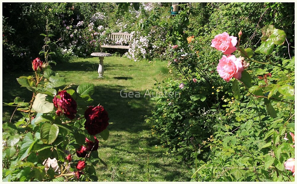 MY ROSE GARDEN by Gea Austen