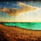 The Varied Textures of Paradise  by David Rozansky