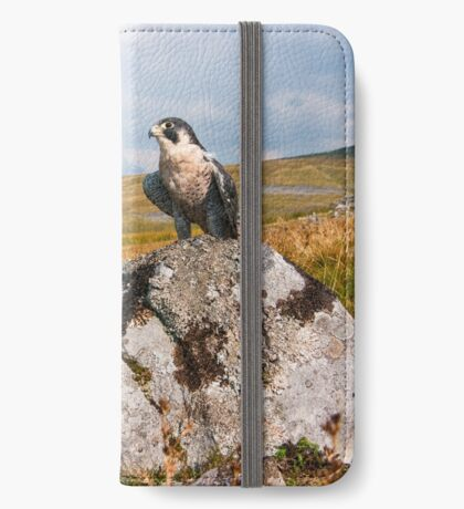 Peregrine Falcon iPhone Wallet