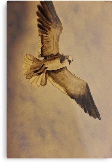 Seagull by JoAnn GLENNIE
