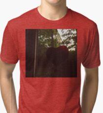 5:25, Feeling Nostalgic Tri-blend T-Shirt