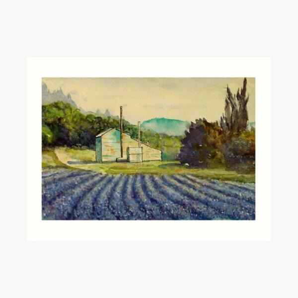 Lavender distillery near Sault and Aurel, Provence France Art Print