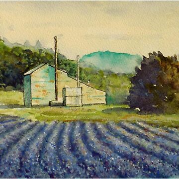 Lavender distillery near Sault and Aurel, Provence France by marshstudio