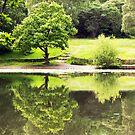 Keston Ponds by John Gaffen