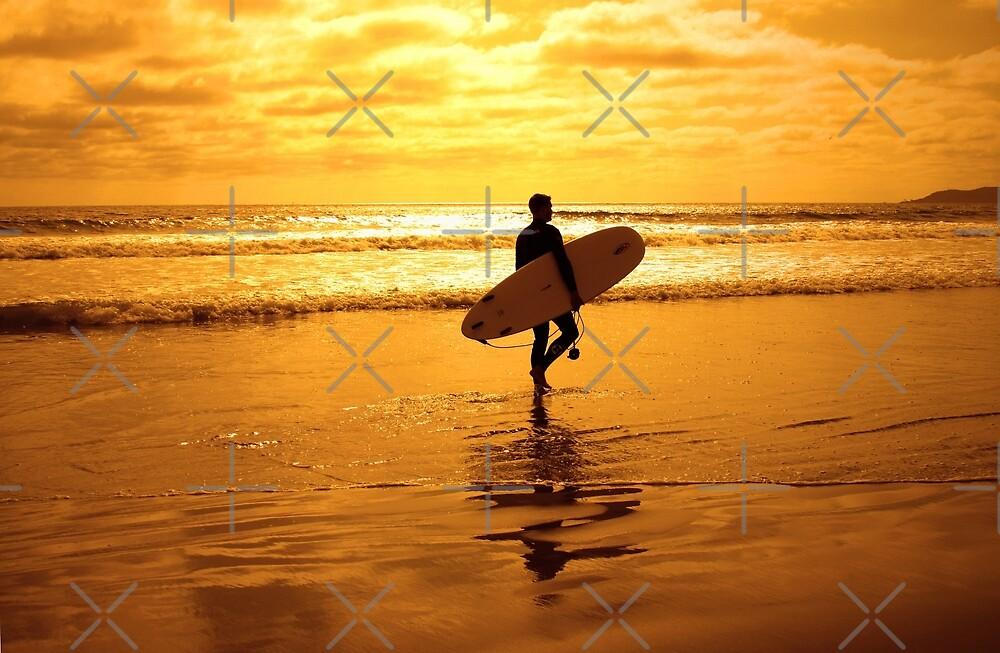 California Surfer by CarolM
