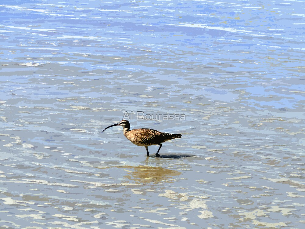 Whimbrel In The Galapagos Painting by Al Bourassa