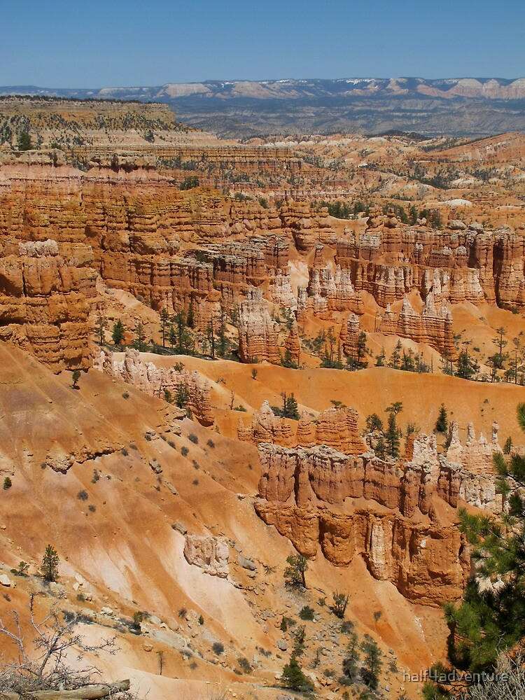 Bryce Canyon by half4adventure