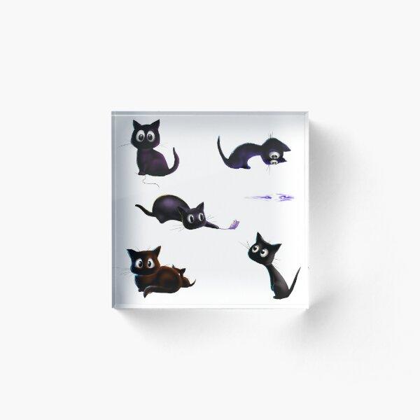 Schwarzes Kätzchen - Alle Bewegungen Acrylblock