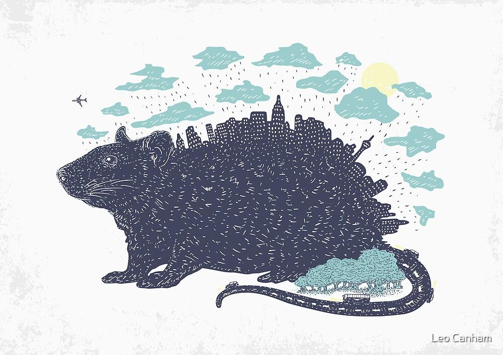 City Rat by Leo Canham