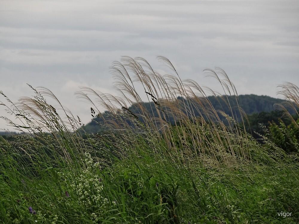 Pennsylvania scenery by vigor