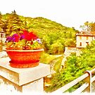 Fognano: view with vase with flowers by Giuseppe Cocco