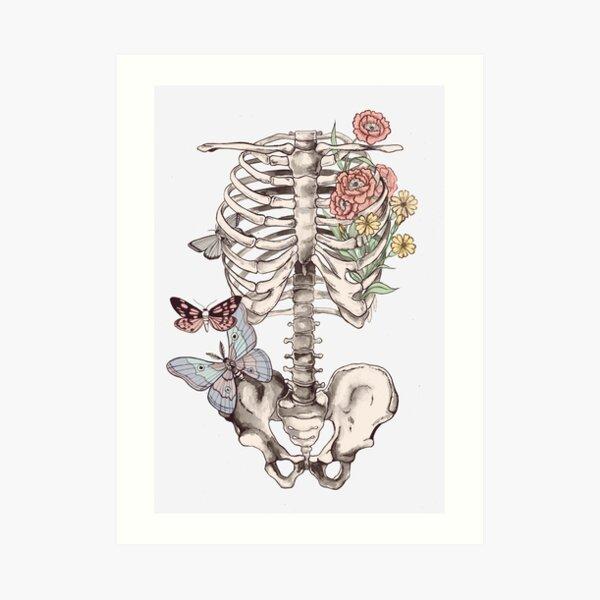 watercolour anatomy Art Print